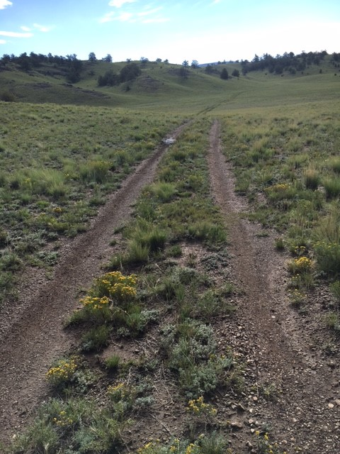 Available Properties | Colorado Land For Sale | Affordable
